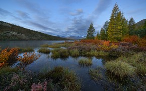 Picture autumn, forest, the sky, shore, the evening, twilight, pond