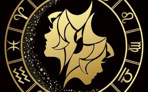 Picture round, Gemini, zodiac sign