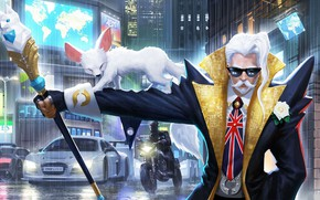 Picture machine, mustache, the city, animal, the game, glasses, male, King of Glory, The king of …
