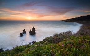 Picture landscape, sunset, nature, the ocean, rocks, shore, vegetation, CA, USA