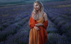 Picture girl, smile, beautiful, lavender, Alabina Catherine