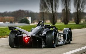 Picture rear view, 2018, Formula E, DS Motor, DS E-Tense FE 19