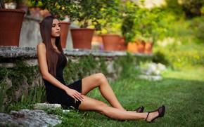 Picture girl, grass, Model, long hair, dress, legs, photo, flowers, lips, face, brunette, plants, high heels, …