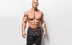 Picture pose, shorts, actor, torso, muscle, muscle, wrestler, press, WWE, John Cena, John Cena, bodybuilder, abs, …