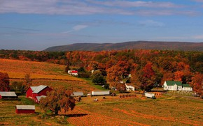 Picture autumn, harvest, pumpkin, USA, PA