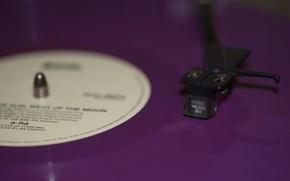 Picture macro, vinyl, record, needle
