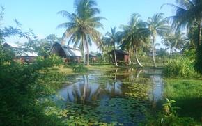 Picture Nature resorts, Plantations in Surinam, Frederiksdorp Suriname, Plantages in Suriname