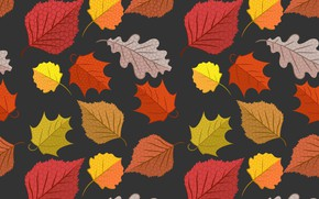 Picture autumn, leaves, background, colorful, background, autumn, pattern, leaves, autumn, seamless