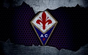 Picture wallpaper, sport, logo, football, Fiorentina