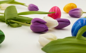 Picture flowers, eggs, Easter, tulips