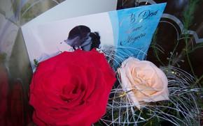 Picture roses, bouquet, postcard, Meduzanol ©