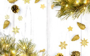 Picture holiday, toys, pine, lights, garland, new year, branches