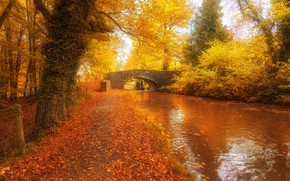 Picture autumn, bridge, river, photo, Wales, United Kingdom