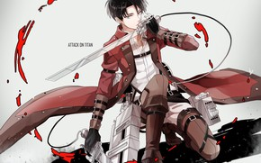 Picture anime, art, Shingeki no Kyojin, Attack of the titans, The invasion of the giants, Levi, …