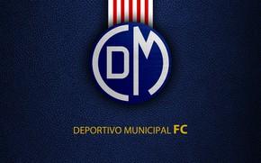 Picture wallpaper, sport, logo, football, Municipal Marina