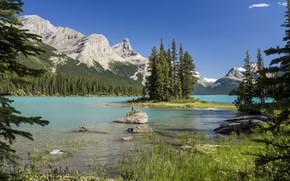 Picture Canada, Albert, Jasper National Park, Maligne Lake