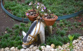 Picture flower, garden, decoration