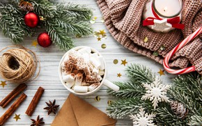 Picture winter, branches, hot, chocolate, ate, Cup, candle, sweater, spices, marshmallows, Olena Rudo