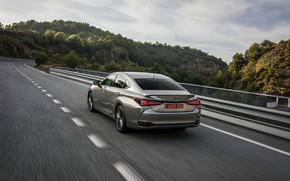 Picture Lexus, Toyota, sedan, hybrid, Avalon, on the road, four-door, 2019, ES 300h