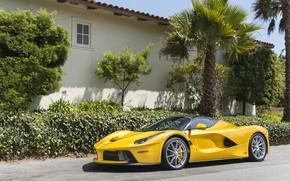 Picture house, palm trees, Bush, Yellow, Ferrari, Ferrari, wheel, Jeep Has Open