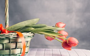 Picture flowers, basket, tape, tulips
