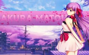 Picture girl, Fate stay night, Fate / Stay Night, Sakura Matou