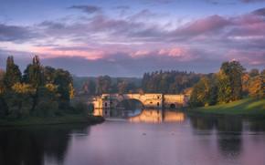 Picture autumn, clouds, trees, bridge, fog, shore, England, arch, haze, pond, Bank