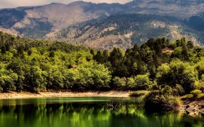Picture summer, trees, mountains, lake