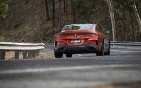 Picture coupe, BMW, the fence, rear view, 2018, 8-Series, 2019, dark orange, M850i xDrive, Eight, G15
