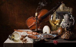 Picture violin, glass, turtle, candle, shell, still life, carnation, spices, flatau