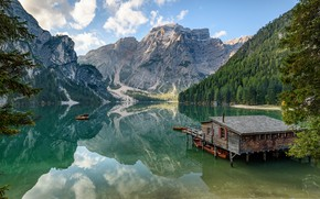 Picture forest, mountains, house, pond