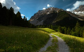 Picture road, forest, summer, the sky, grass, mountains, meadow, track, path