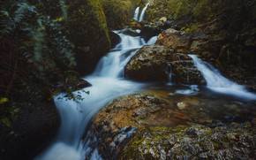 Picture forest, summer, leaves, water, landscape, branches, nature, stones, waterfall, stream, cascade, boulders