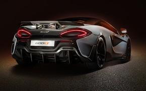 Picture McLaren, supercar, rear view, 2019, 600LT