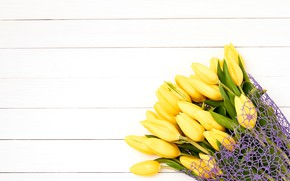 Picture flowers, bouquet, yellow, tulips, fresh, yellow, flowers, tulips, spring
