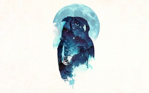 Picture Owl, Midnight, Robert Farkas
