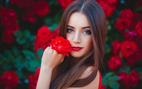 Picture girl, flowers, face, makeup, brunette, hairstyle, hair long
