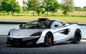 Picture McLaren, supercar, Coupe, MSO, 2019, 600LT