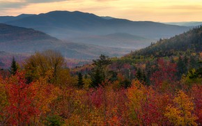 Picture autumn, forest, mountains, foliage