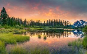 Picture grass, trees, landscape, nature, lake, dawn, mountain, morning, ate, USA, Mount Shuksan, Shuksan