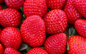 Picture summer, macro, berries, food, harvest, strawberry, red, a lot, composition, Victoria