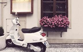 Picture flowers, street, window, motorcycle, bridge, scooter, Vespa