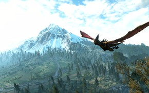 Picture the witcher, the Witcher, the wild hunt, the witcher 3 wild hunt