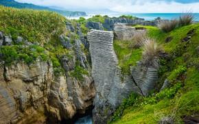 Picture Nature, Sea, Grass, Rocks, Gorge