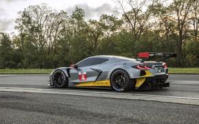 Picture Corvette, Chevrolet, Track, Race car, Sports car, Wing, 2020, Racing car, C8.R, Chevrolet C8.R