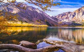 Picture autumn, forest, mountains, shore, pond, logs