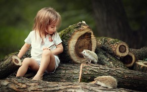 Picture animals, nature, girl, child, logs, hedgehogs, Jerzy, Marianne Smolin