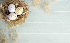 Picture holiday, eggs, feathers, Easter, socket