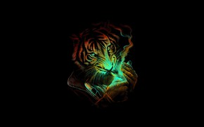 Picture Minimalism, Tiger, Smoke, Cat, Style, Background, Predator, Art, Art, Tiger, Predator, Style, Cat, Smoke, Background, …