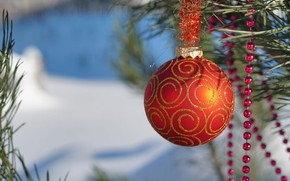 Picture winter, snow, orange, branches, holiday, ball, ball, Christmas, New year, beads, needles, ornament, bokeh, Christmas …